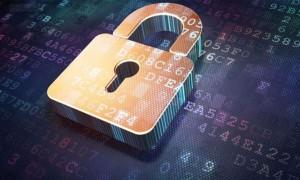 用视联网技术构筑网络安全堡垒